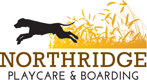 Northridge Playcare & Boarding